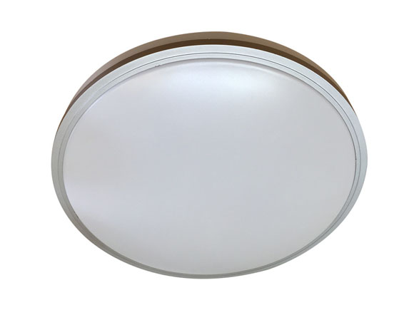 LED Ceiling Lamp 2304